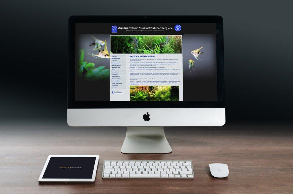 Webdesigner und professionelles Webdesign für Münchberg Helmbrechts